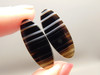 Tuxedo Agate Dyed Black Matched Pair Stone Cabochons #10