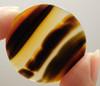 Brazilian Piranha Agate Cabochon 30 mm Round Gemstone #5