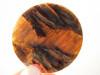 Arizona Pietersite Tiger-eye 52 mm Round Gemstone Cabochon #16