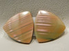 Royal Imperial Jasper Cabochon Stone Matched Pair 20 mm Trillion #11
