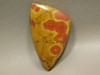 Morgan Hill Poppy Jasper Orbicular Triangle Cabochon California #12