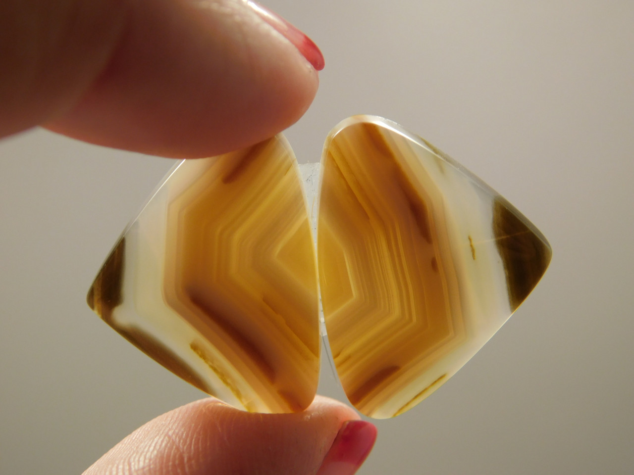Brazilian Piranha Agate Matched Pair Cabochons Stones #2