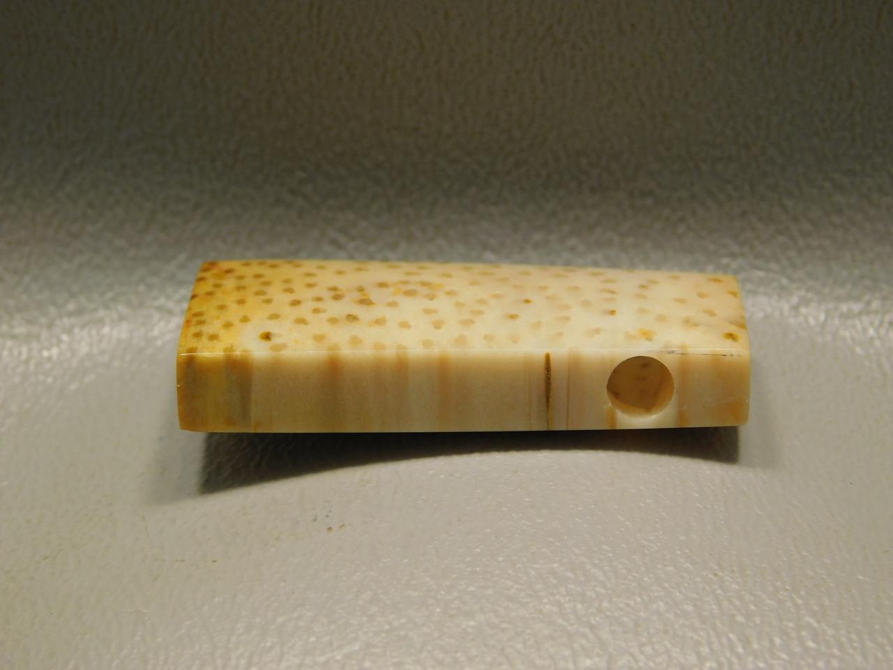Petrified Palm Wood Stone Bead Pendant #11
