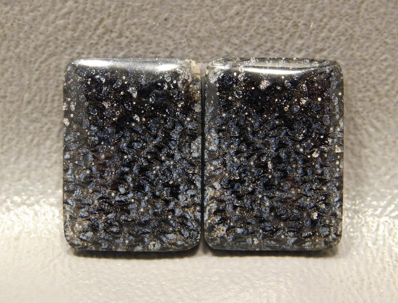 Palm Wood Matched Pair Black Polka Dot Rectangles Cabochons #3