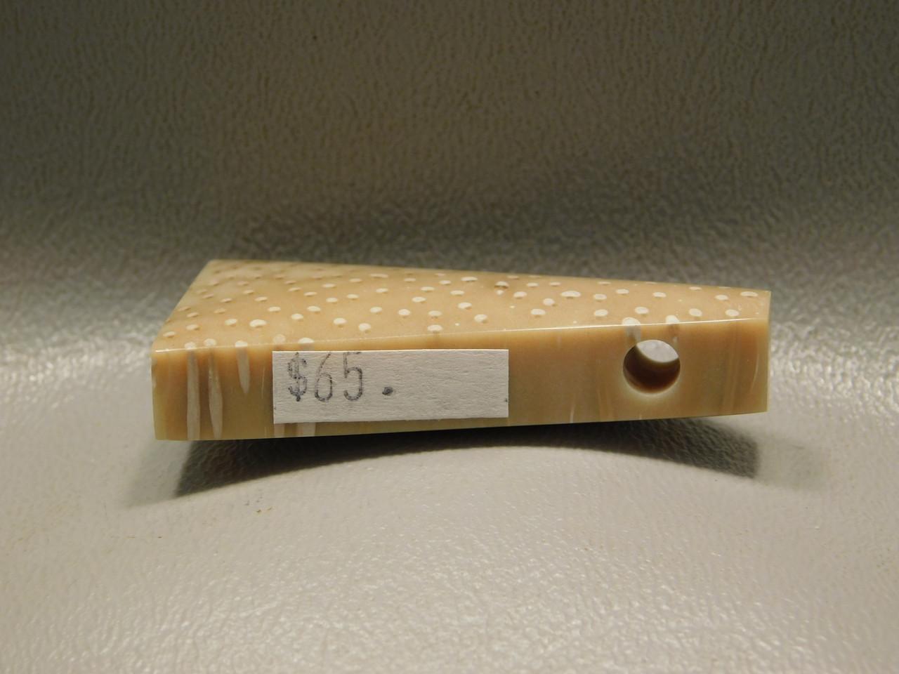 Petrified Palm Wood Stone Bead Pendant #5
