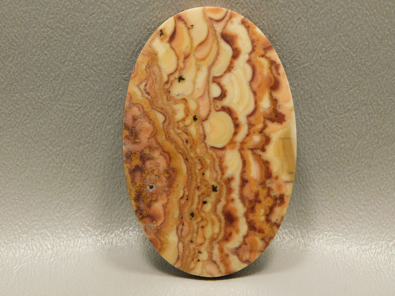 Wave Dolomite Large Oval Cabochon Stromatolite #4