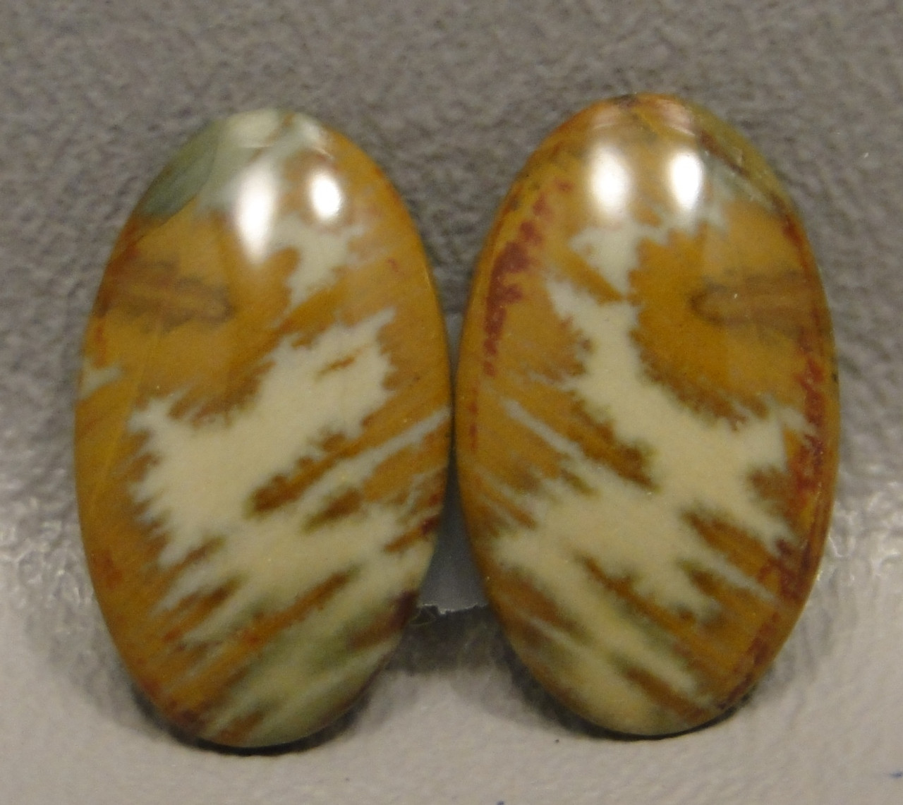 Owyhee Picture Jasper Matched Pair Cabochons #17