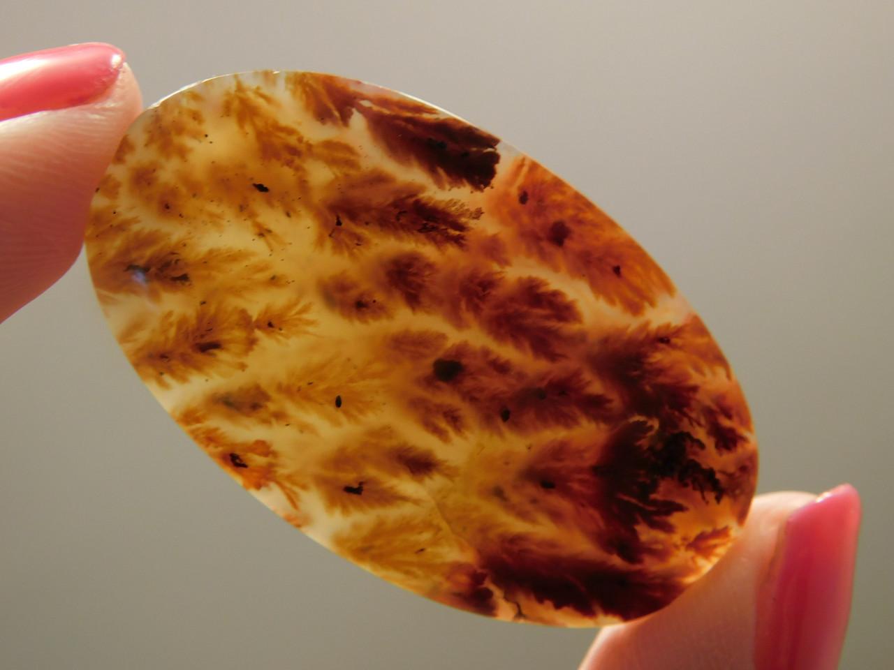Bull Canyon Flame Agate Semi Precious Stone Cabochon 3