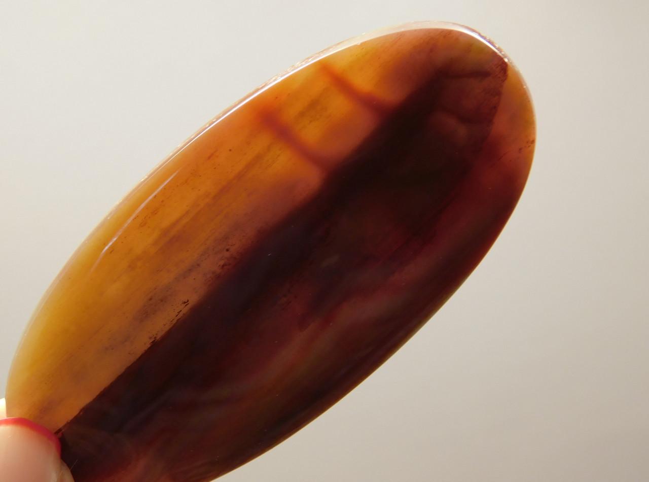 Petrified Rainbow Wood Designer Large Cabochon Stone Arizona #s1