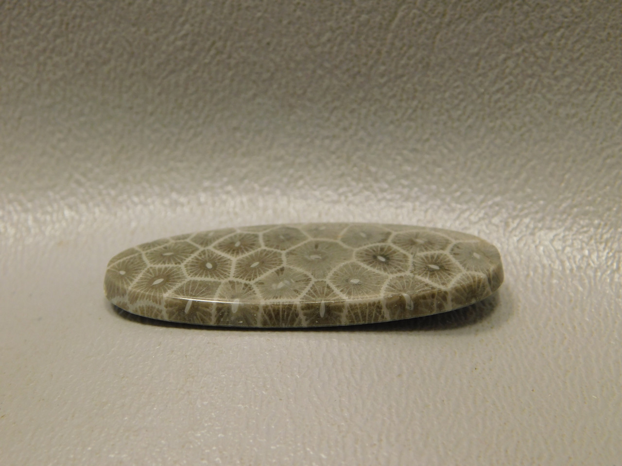 Flower Jasper Semiprecious Stone Fossil Coral Cabochon #F14