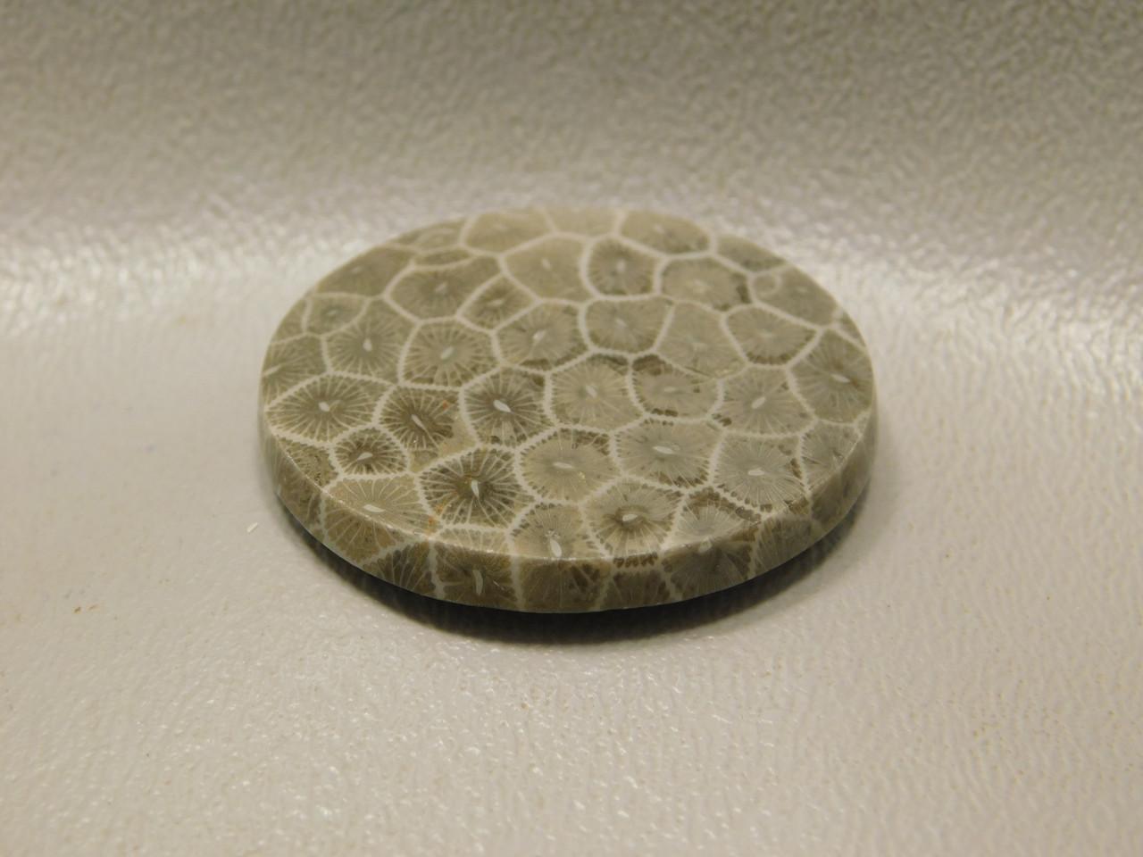 Semiprecious Gemstone 34 mm round Stone Cabochon #F16