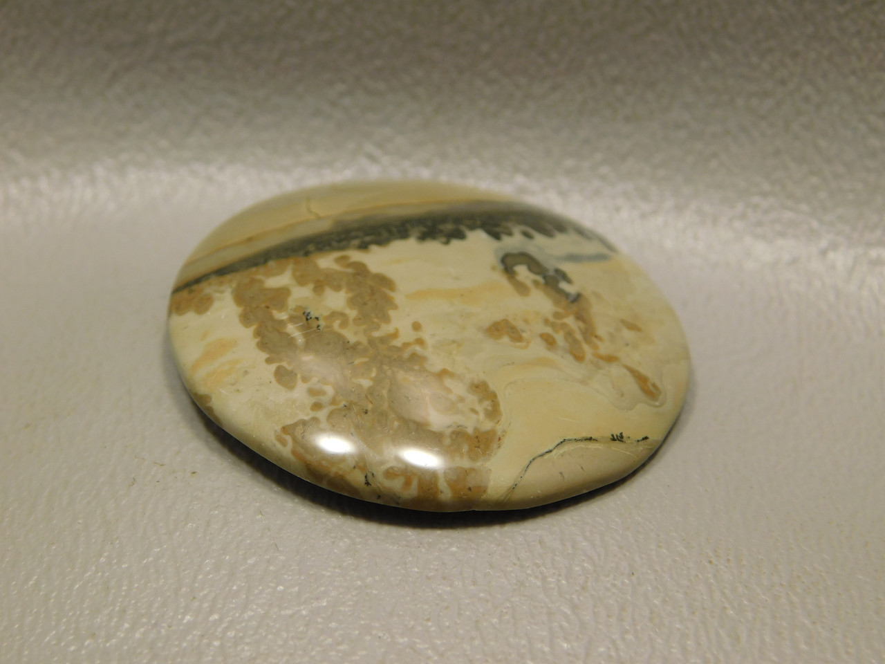 Cotham Marble Fossil Stone Cabochon Jewelry Making Supplies #19