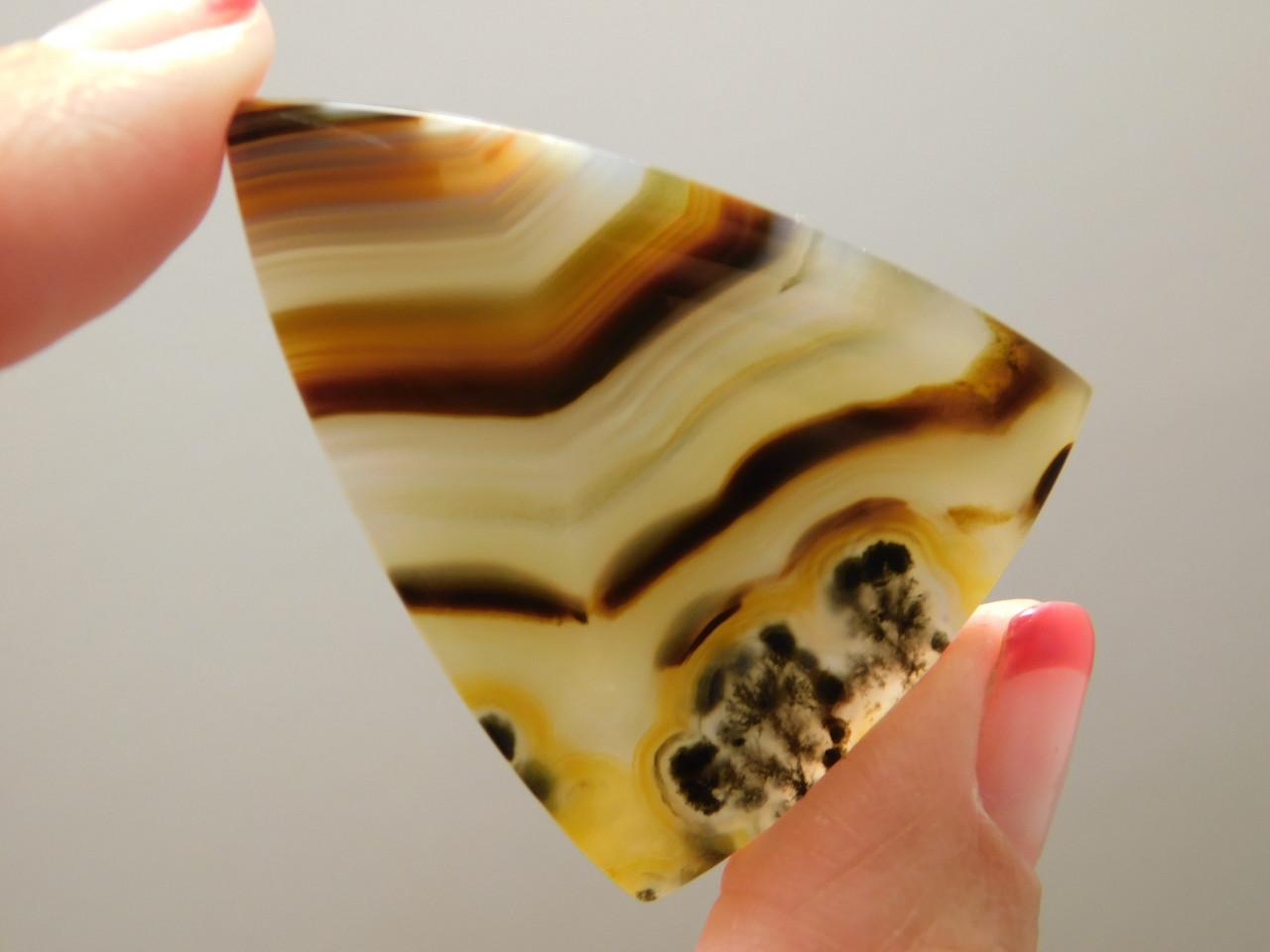 Brazilian Piranha Agate Cabochon Designer Triangle Striped #11