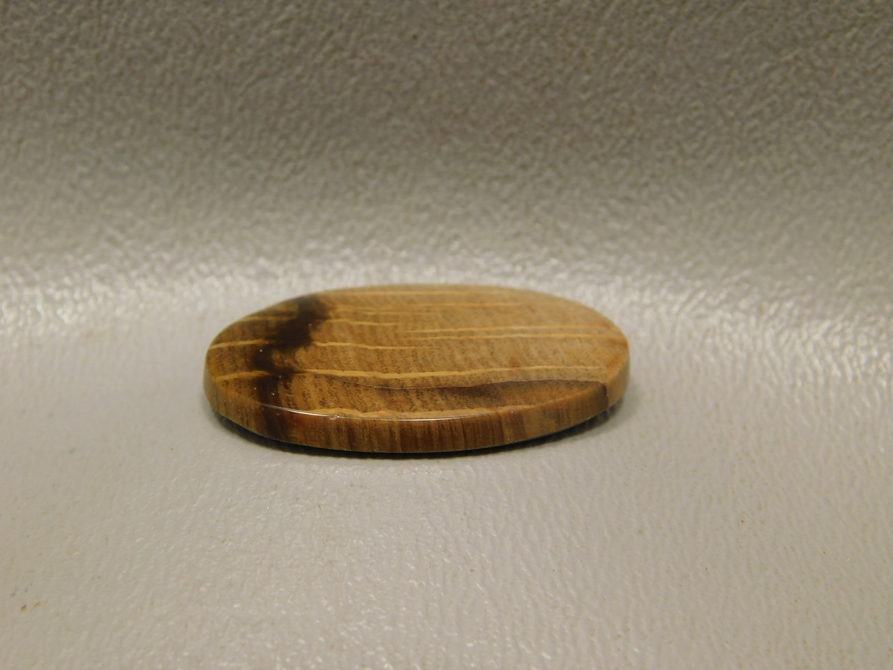 Petrified Wood Golden Oak Small Oval Cabochon Stone #21