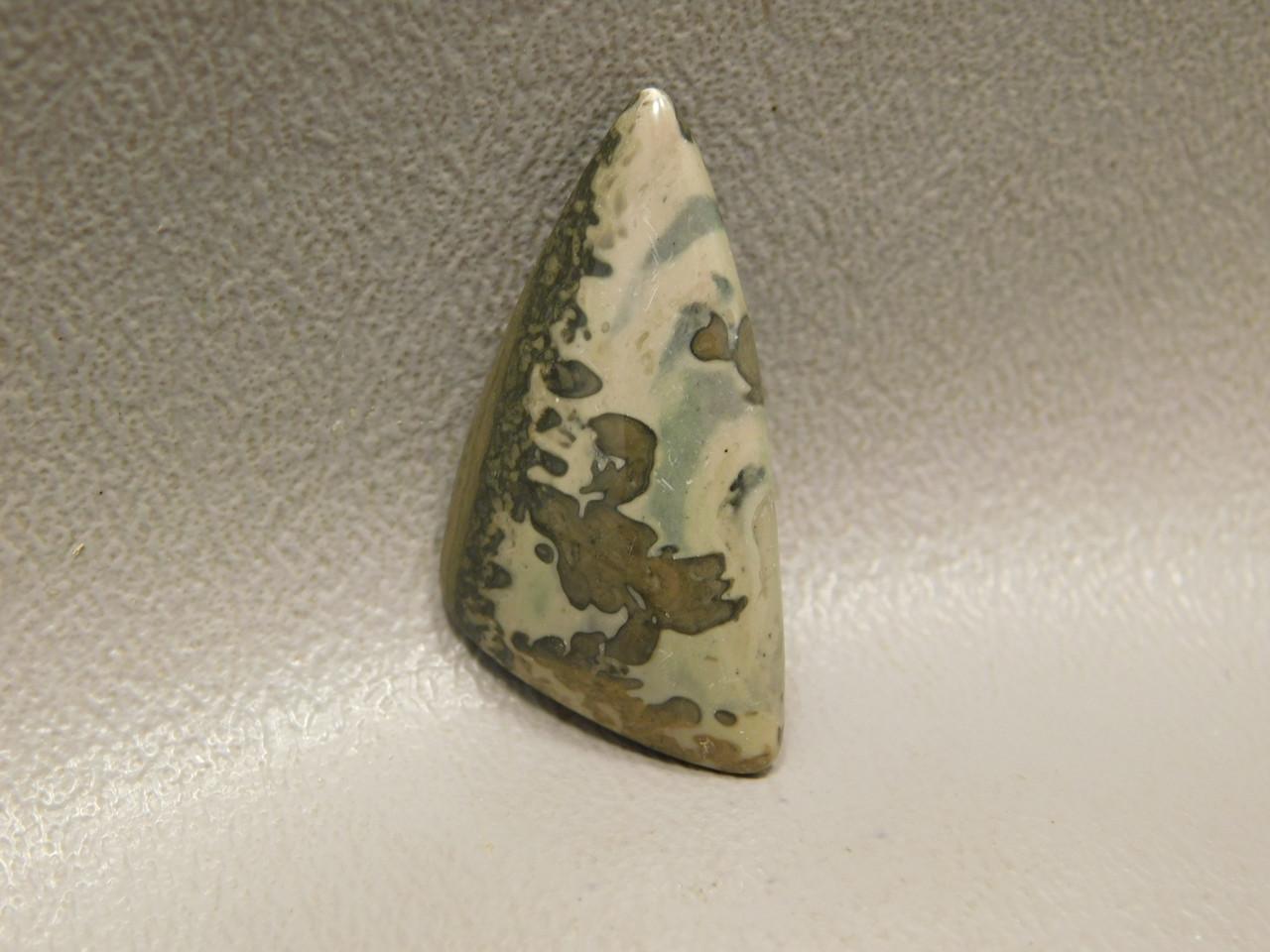 Cotham Marble Cabochon Fossil Stromatolite #24