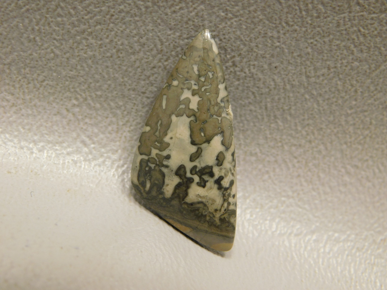 Cotham Marble Cabochon Fossil Stromatolite Jewelry Stone #23