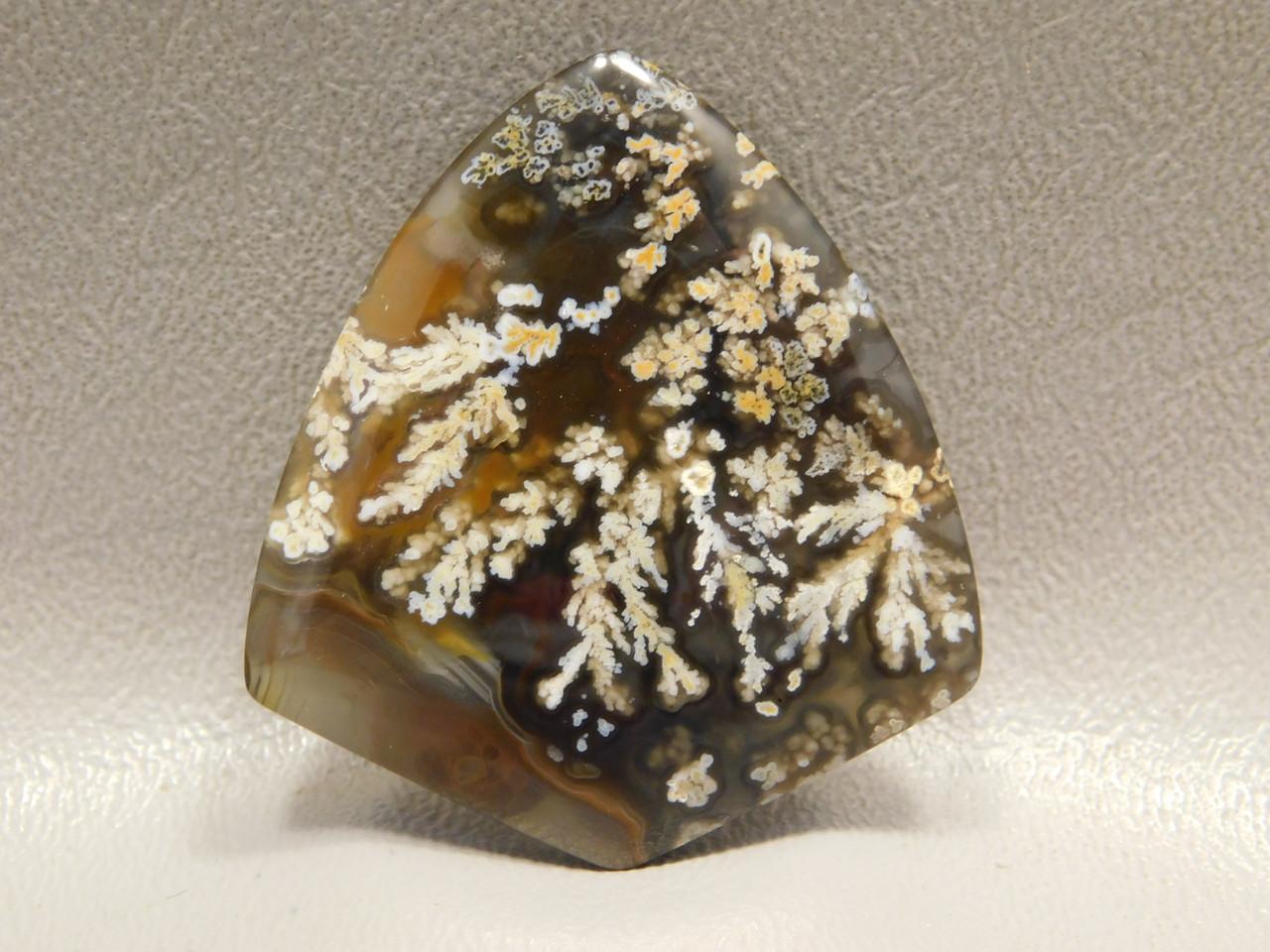 Cabochons Priday Plume Agate Oregon Freeform Agate #13