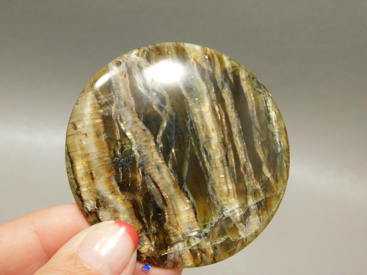 Stone Cabochon  Arizona Pietersite Chatoyant 55 mm  Round #11