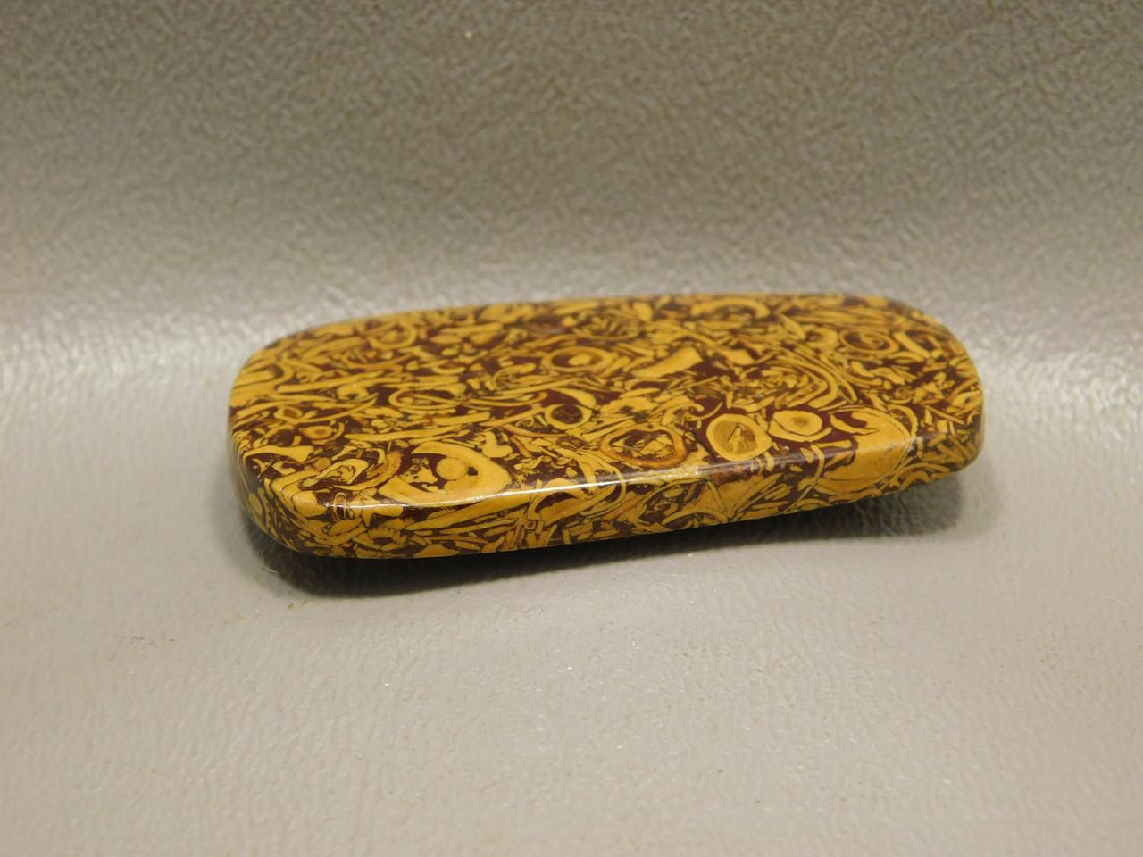 Cabochon Coquina Jasper Stone Cobra Elephant Skin Script Gemstone 3