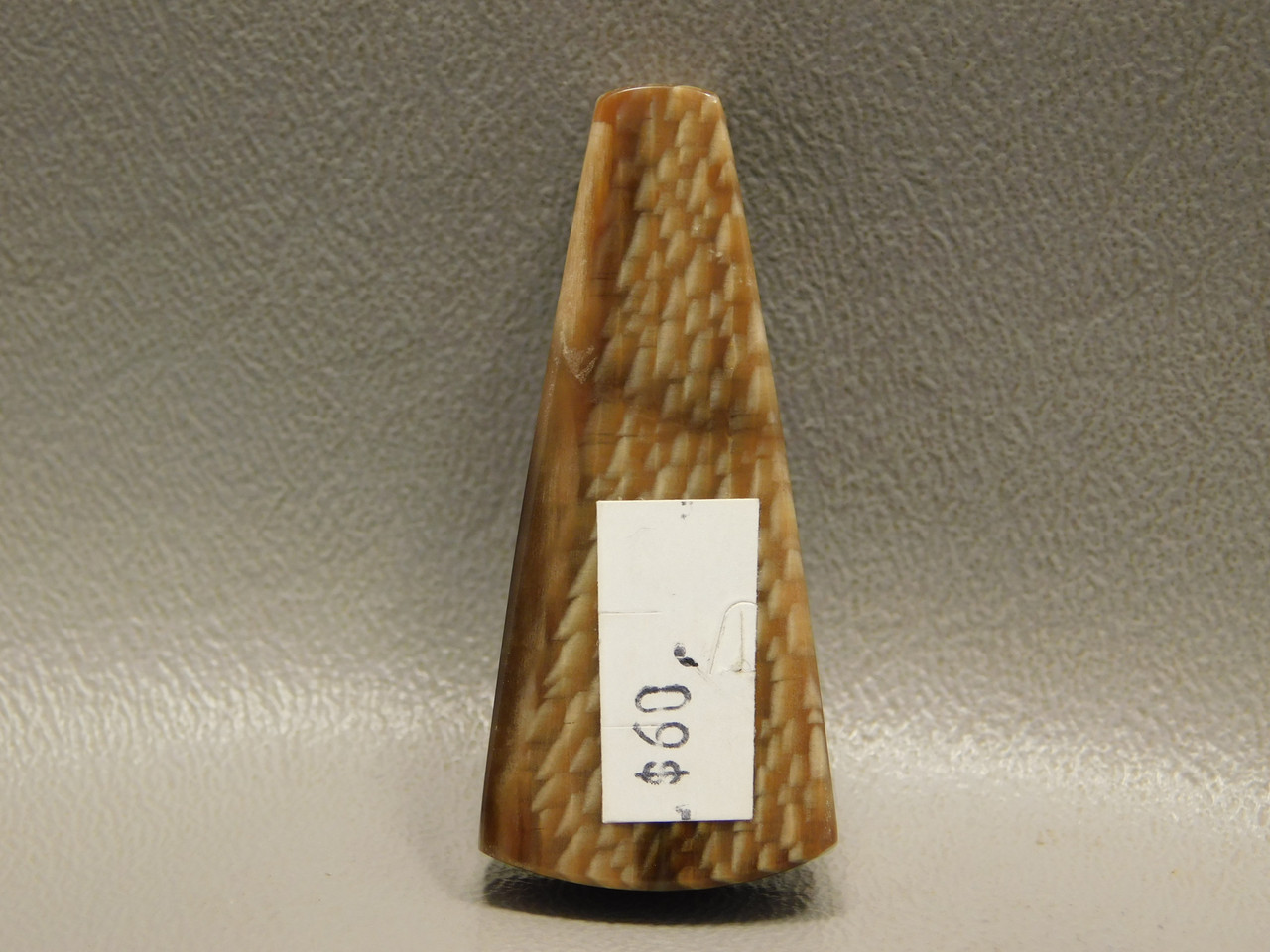 Petrified Sycamore Wood Stone Bead Pendant #1