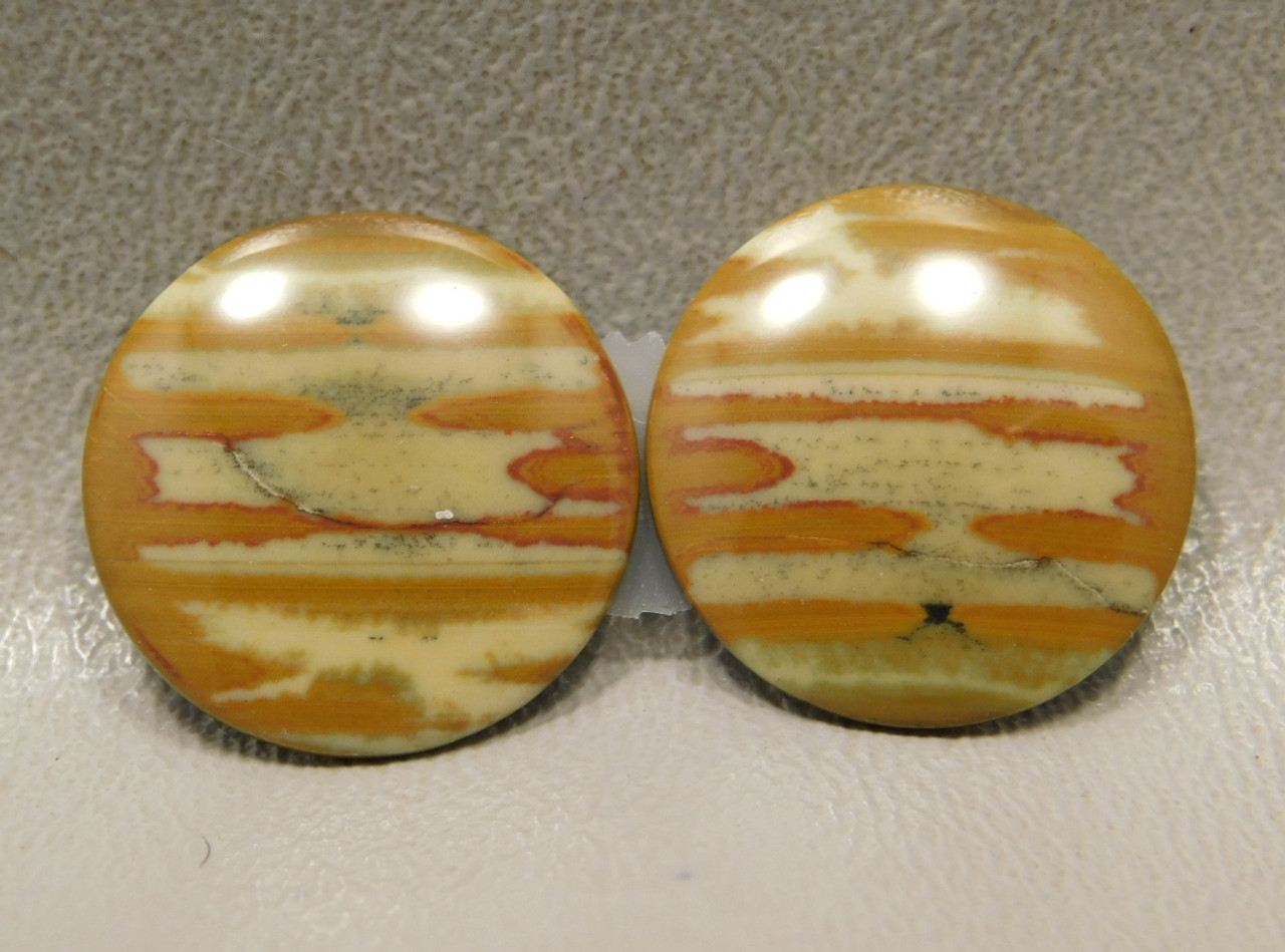 Owyhee Jasper Matched Pair Cabochons 20 mm rounds #24