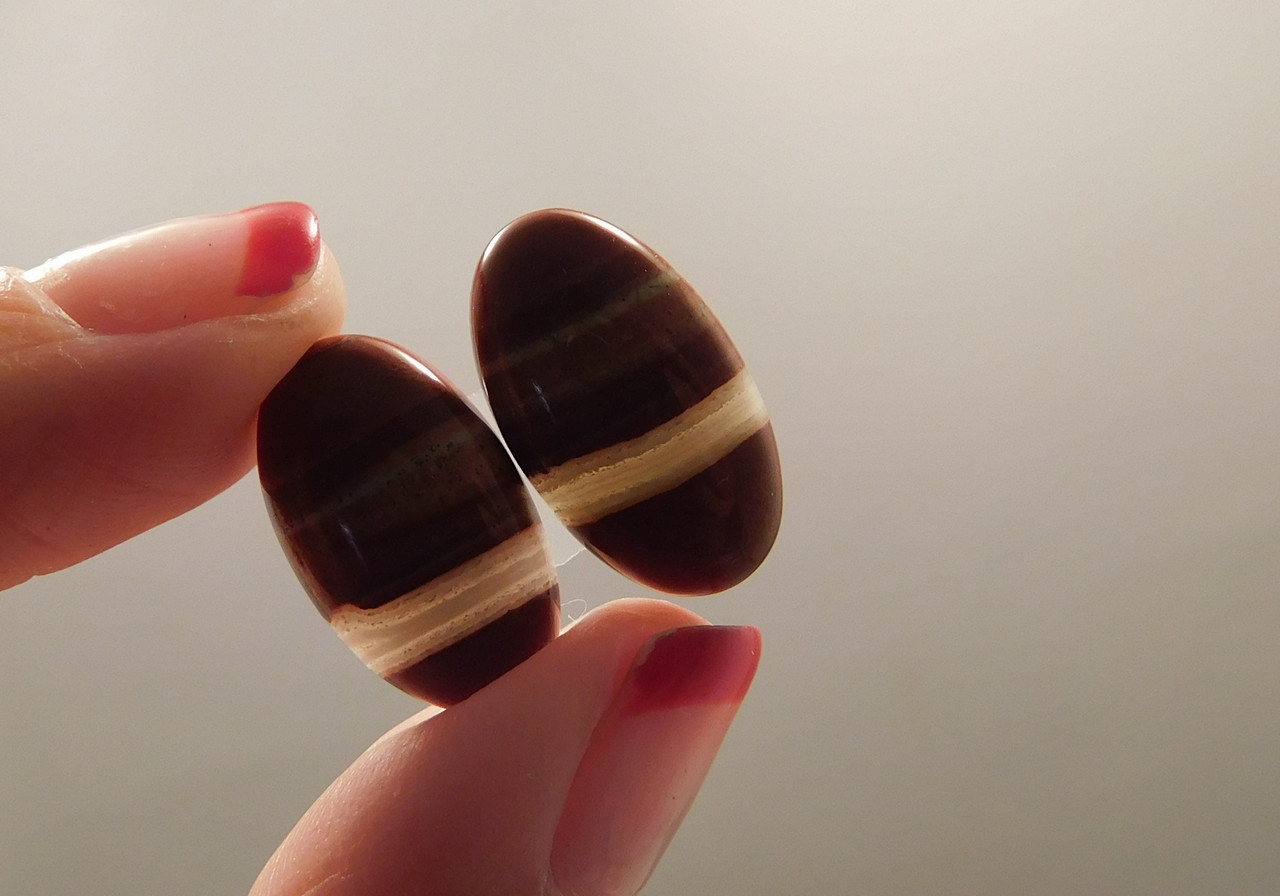 Red Jasper Matched Pair Cabochons #14