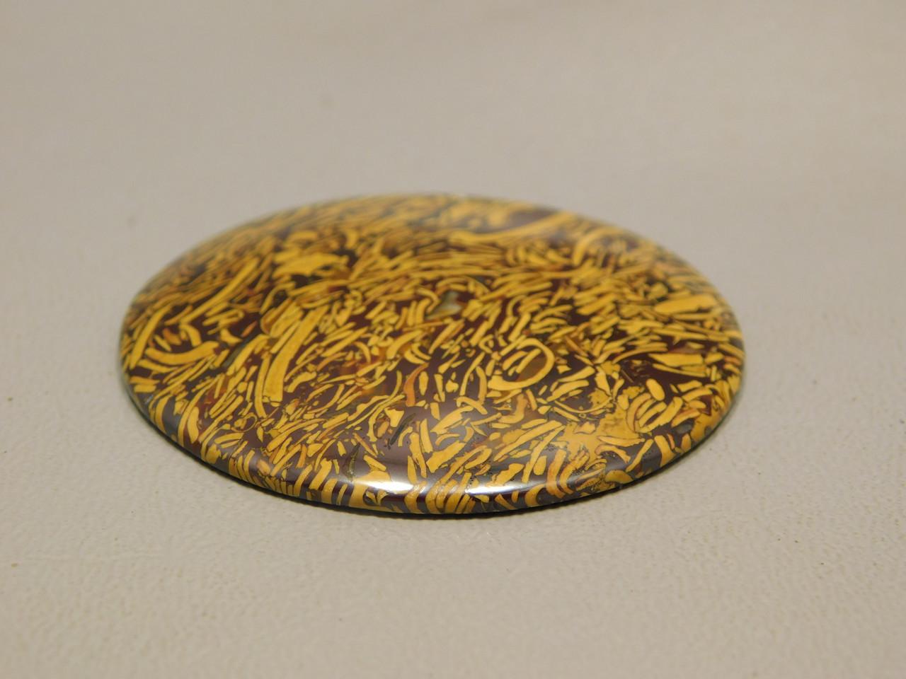Cabochon Coquina Jasper Stone 45 mm Round Fossil  2