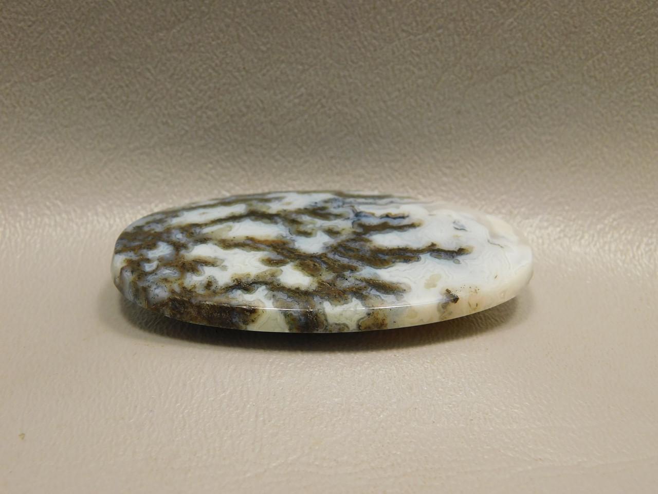 Graveyard Plume Agate Large Oval Designer Cabochon Stone #17