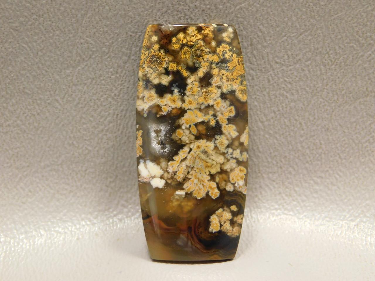 Priday Plume Agate Cabochon Stone Oregon #20