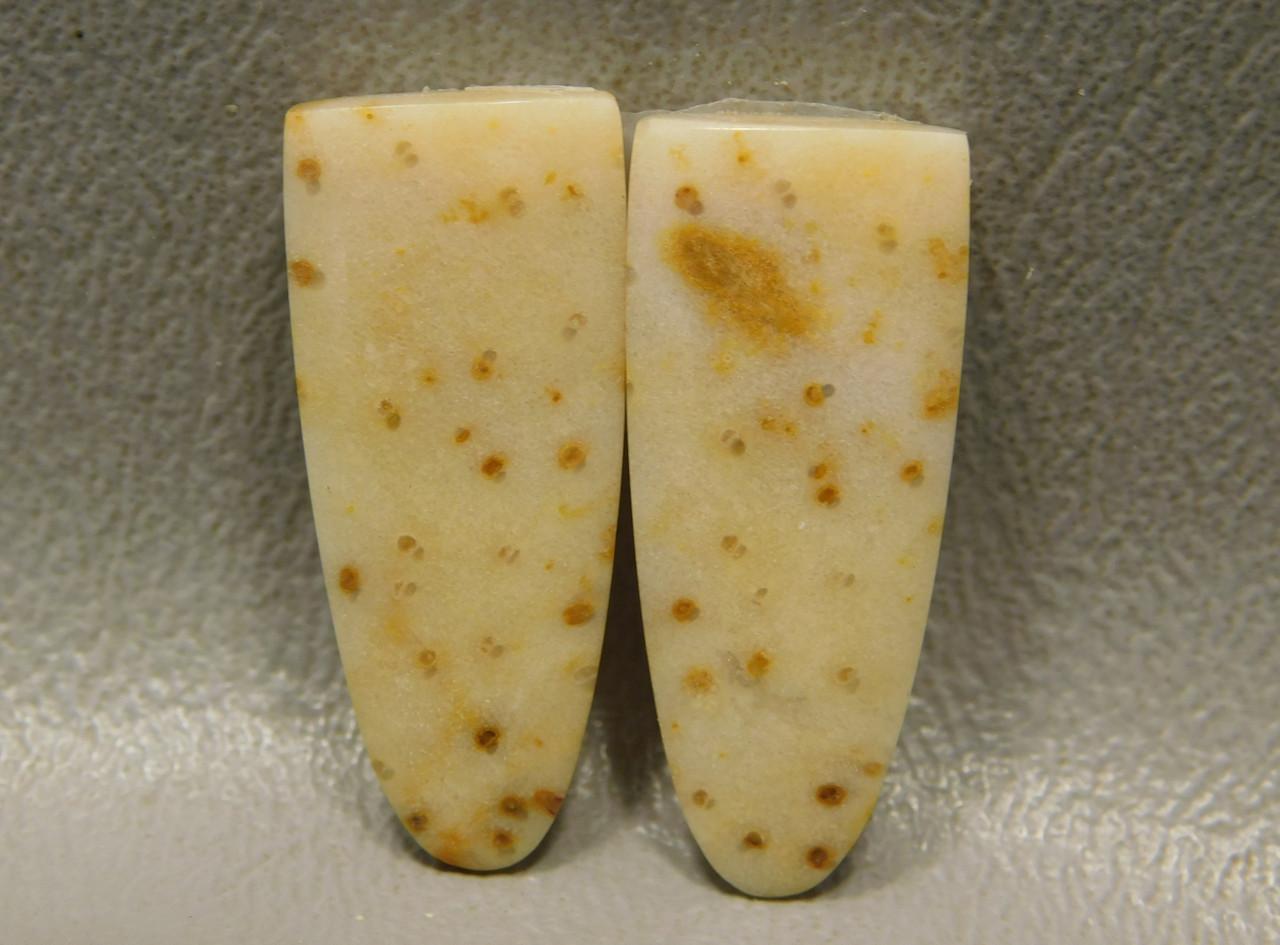 Petrified Palm Wood Louisiana Tongues Matched Pair Cabochons #19