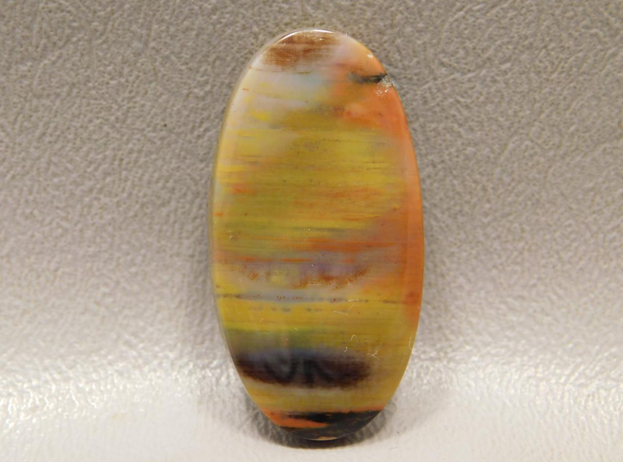 Arizona Red and Yellow Petrified Wood Cabochon Jewelry Supplies #8