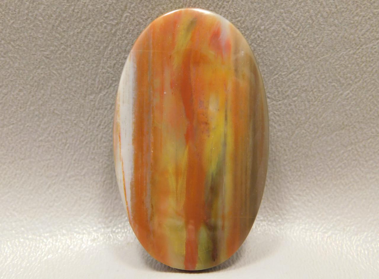 Arizona Petrified Wood Cabochon Jewelry Making Supplies #9