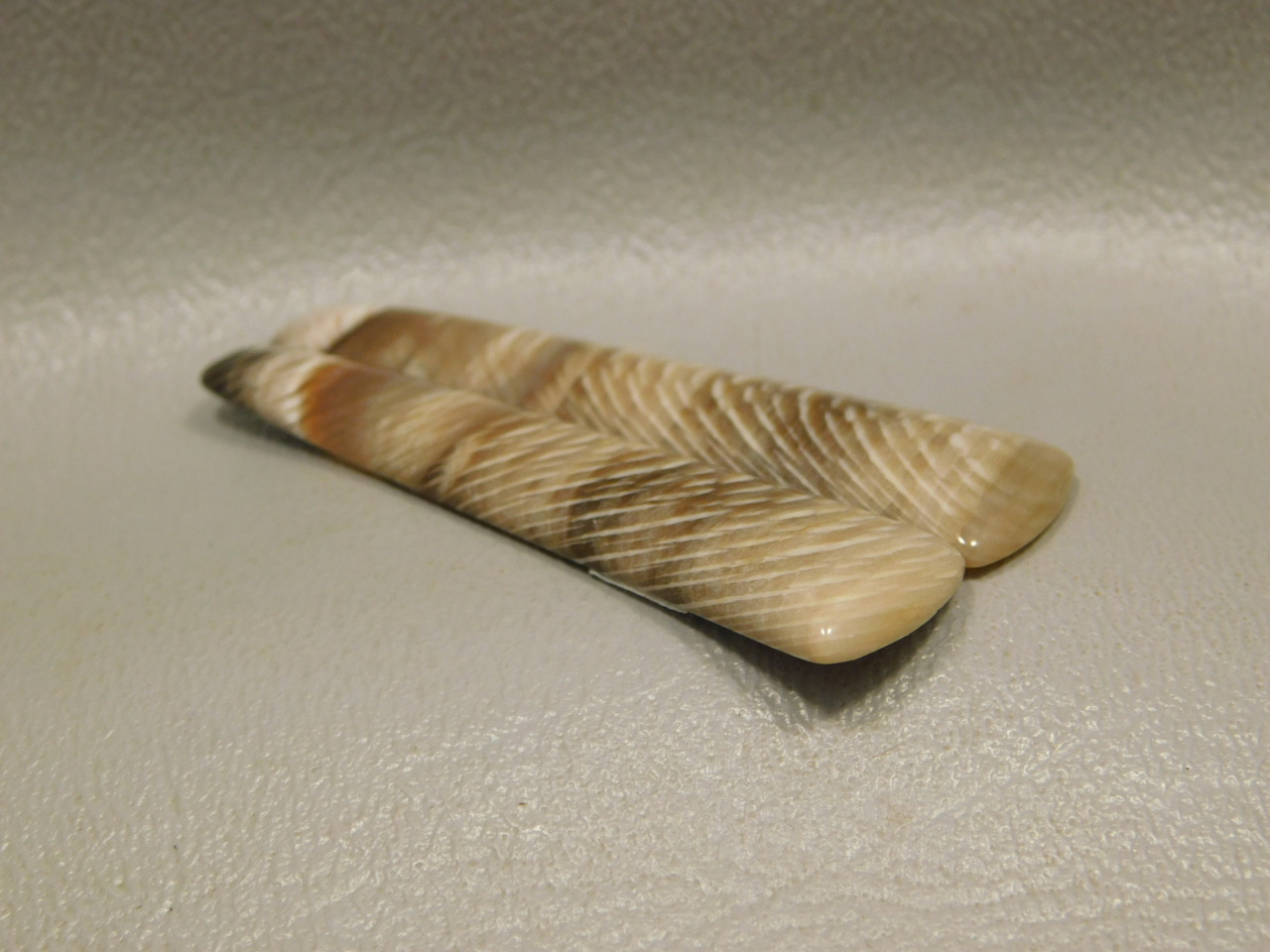 Petrified Wood Sycamore Matched Pair Cabochon Stones #16