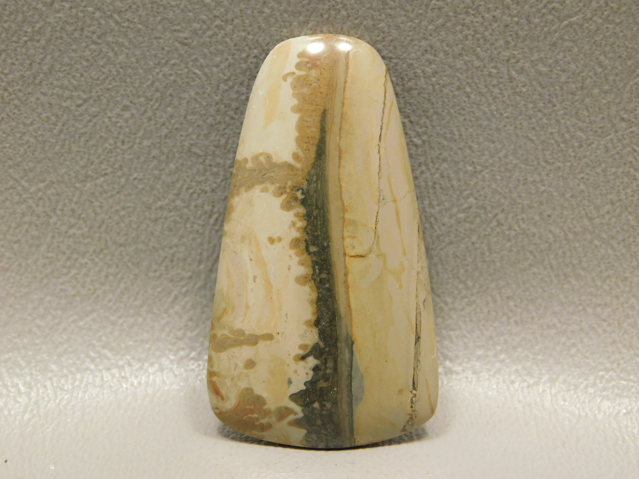 Cotham Marble Fossil Stone Cabochon Stromatolite Gemstone #7