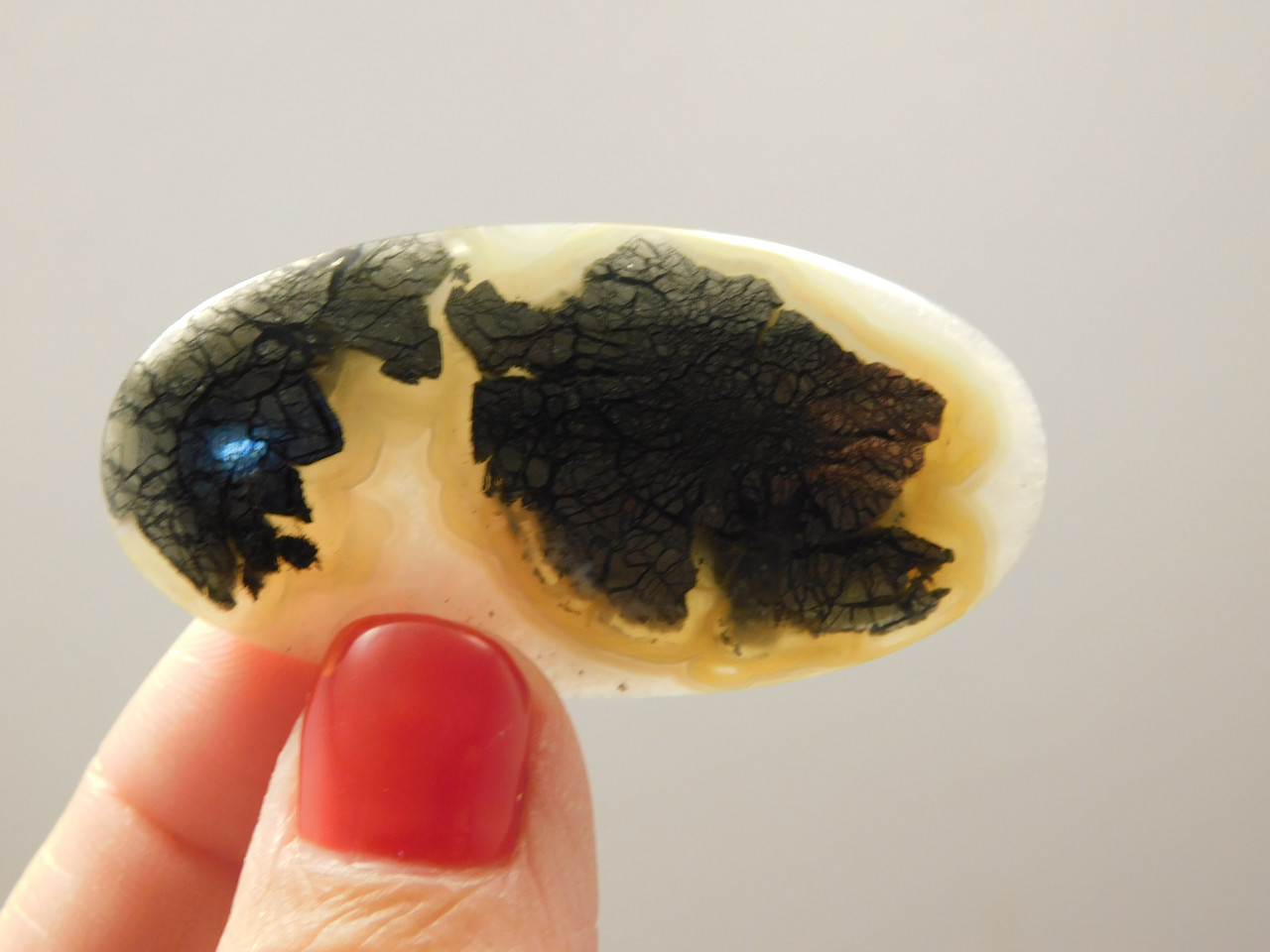 Marcasite Gold Nipomo Agate Cabochon Jewelry Stone Supplies #3
