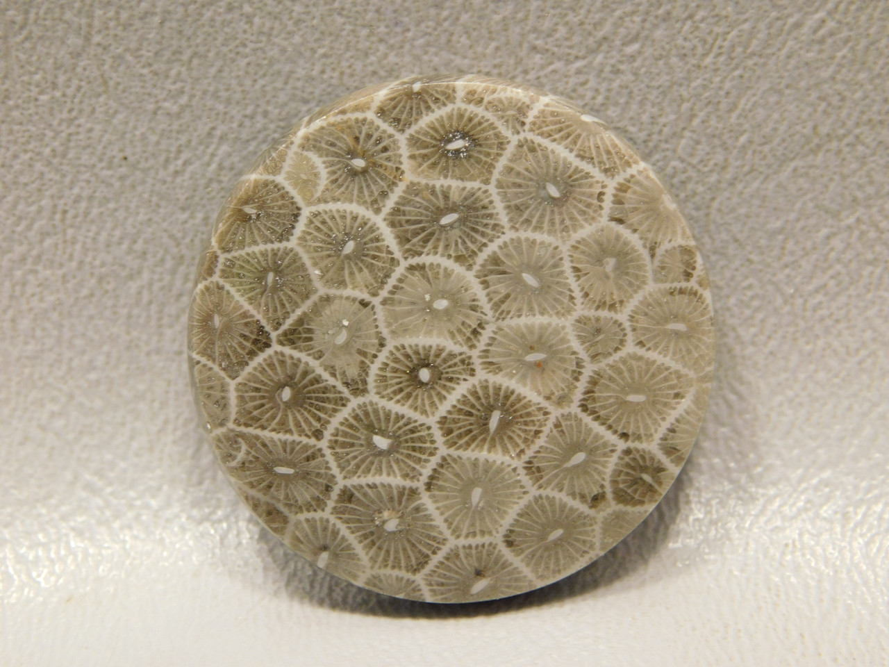 Flower Jasper Cabochon Loose Stones 32.5 mm Round #f7