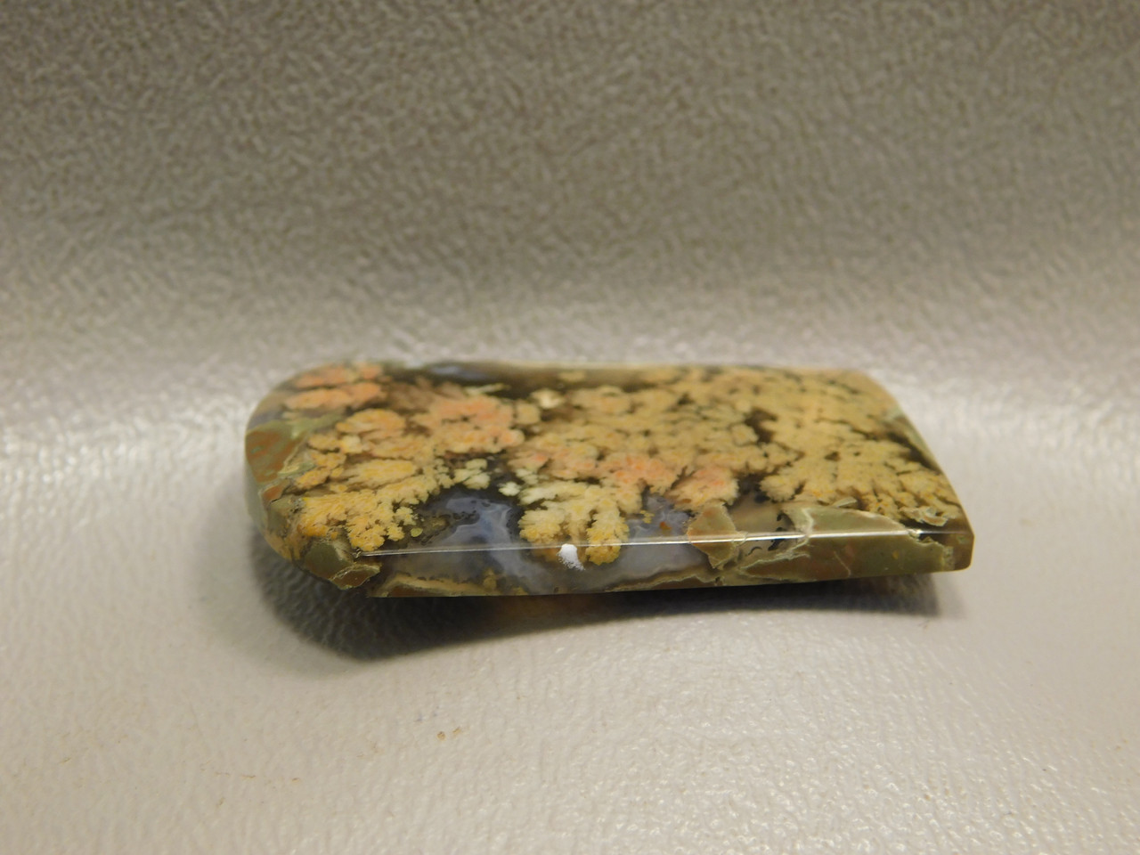 Designer Cabochon Rare Tongue Shaped Priday Plume Agate Oregon #5