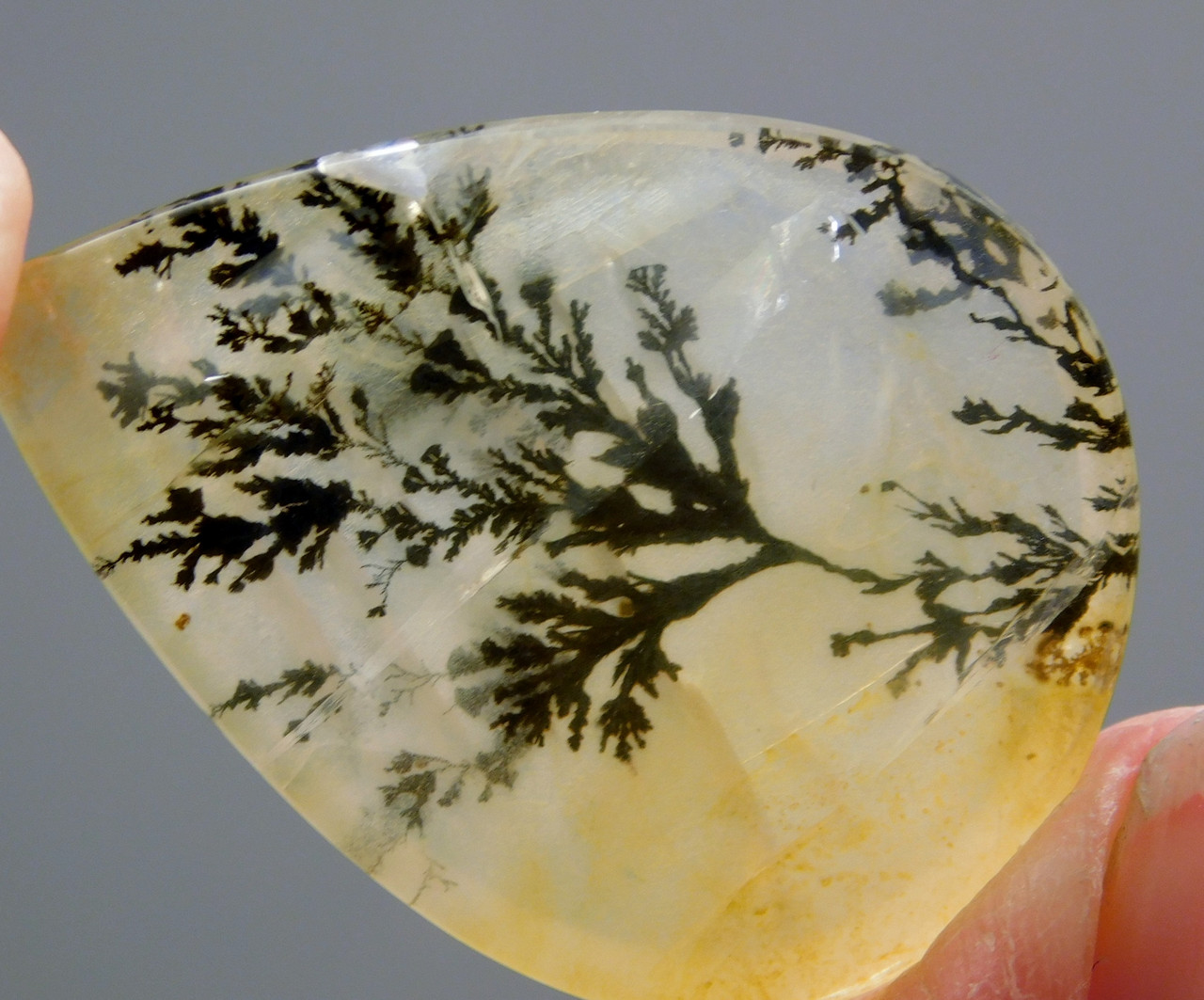 Cabochon Stone Dendritic Quartz Dendrite Pear Shaped #3