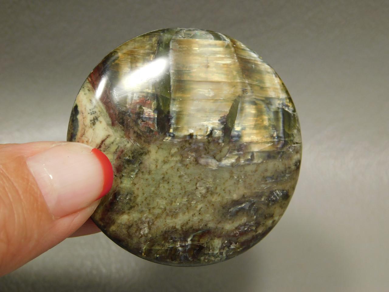 Arizona Pietersite Tiger-eye 40 mm Round Gemstone Cabochon #1