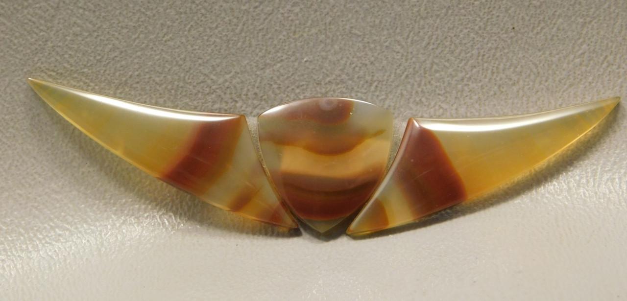 Brazilian Piranha Agate Cabochon 3 piece Set of Stones#6