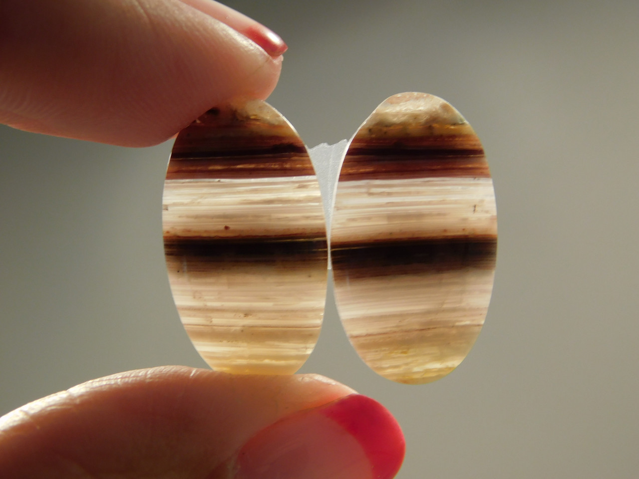 Candy Opal Matched Pairs Gemstones Cabochons Bacon Striped #7