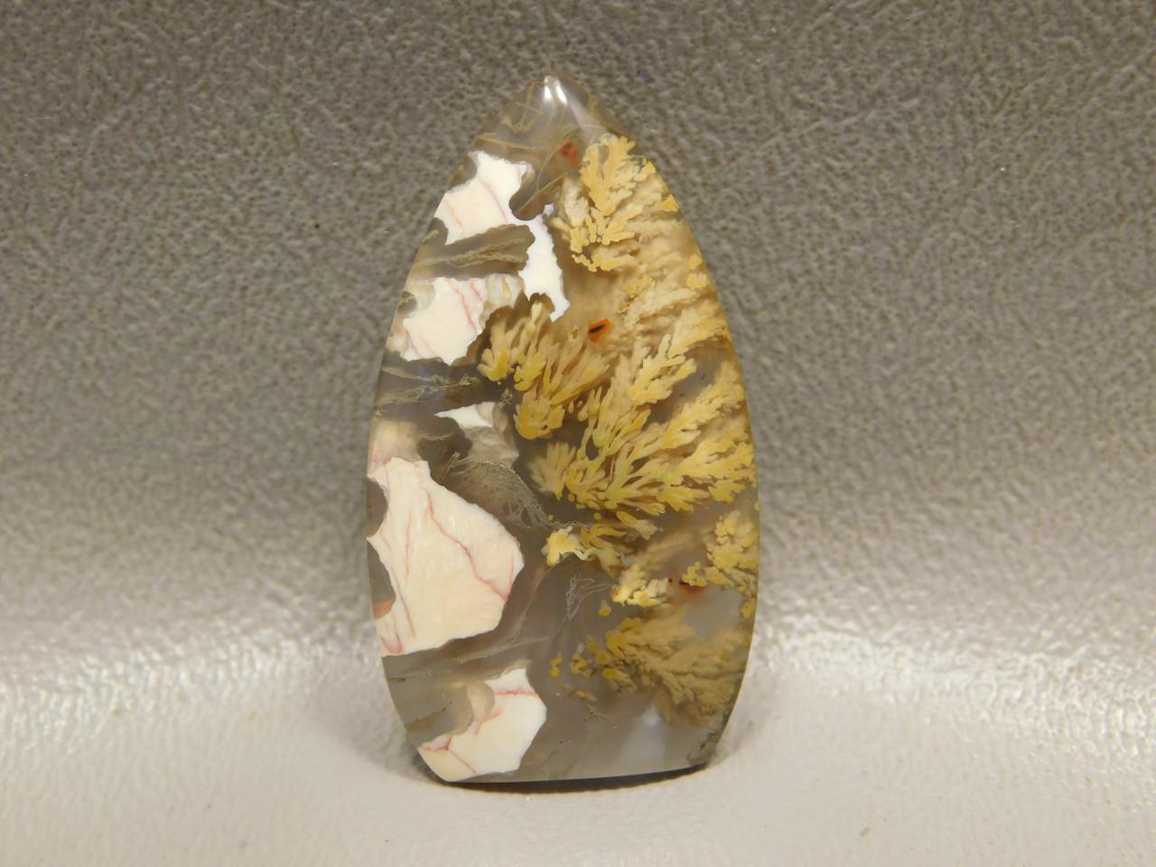 Translucent Priday Plume Agate Designer Stone Cabochon #15