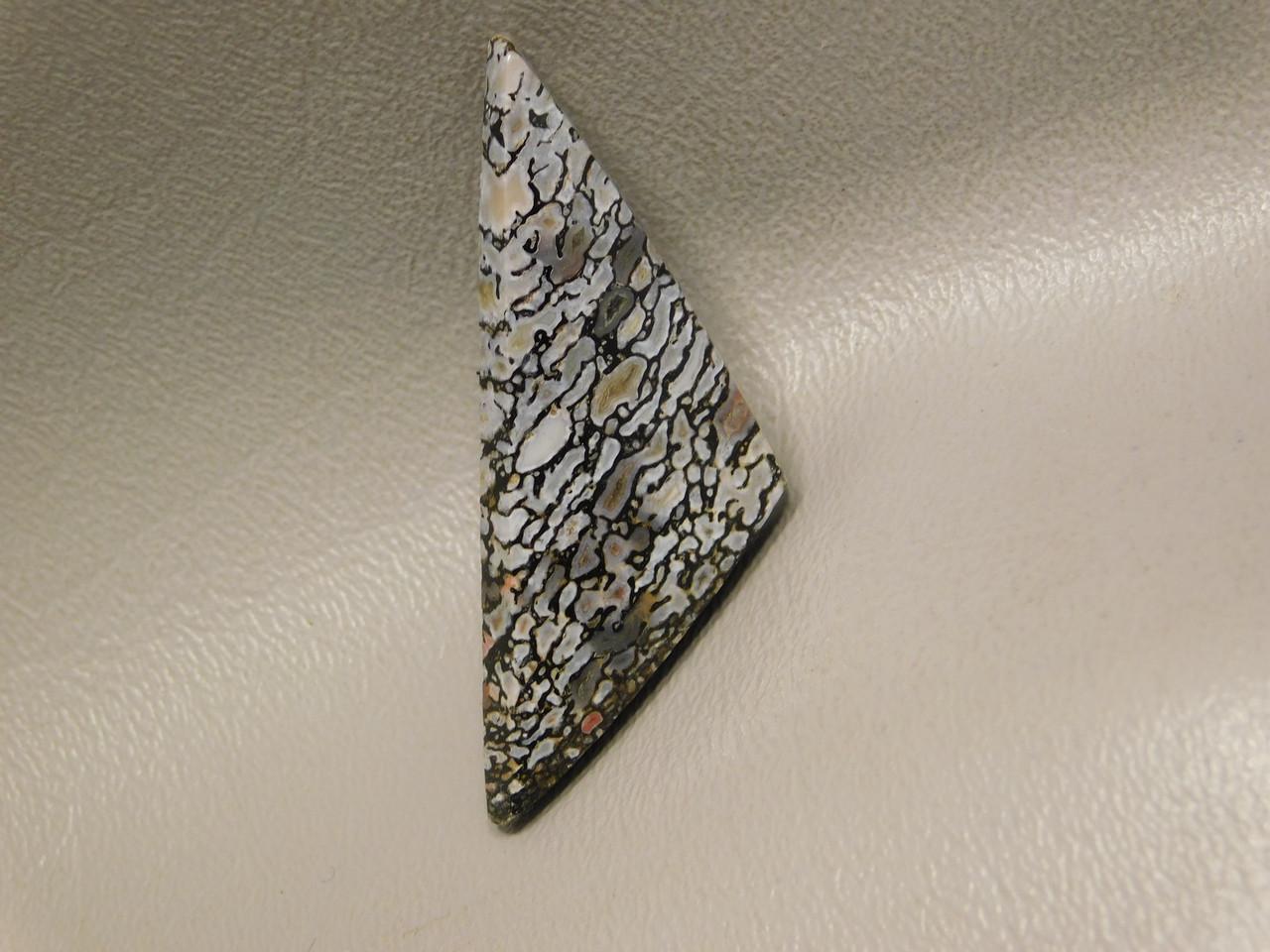 Natural Petrified Dinosaur Bone Cabochon Fossil Triangle Stone #12