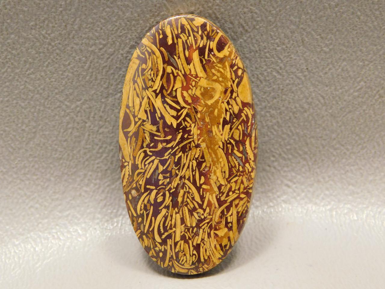 Cabochon Coquina Jasper Cobra Stone Calligraphy Script Stone #11