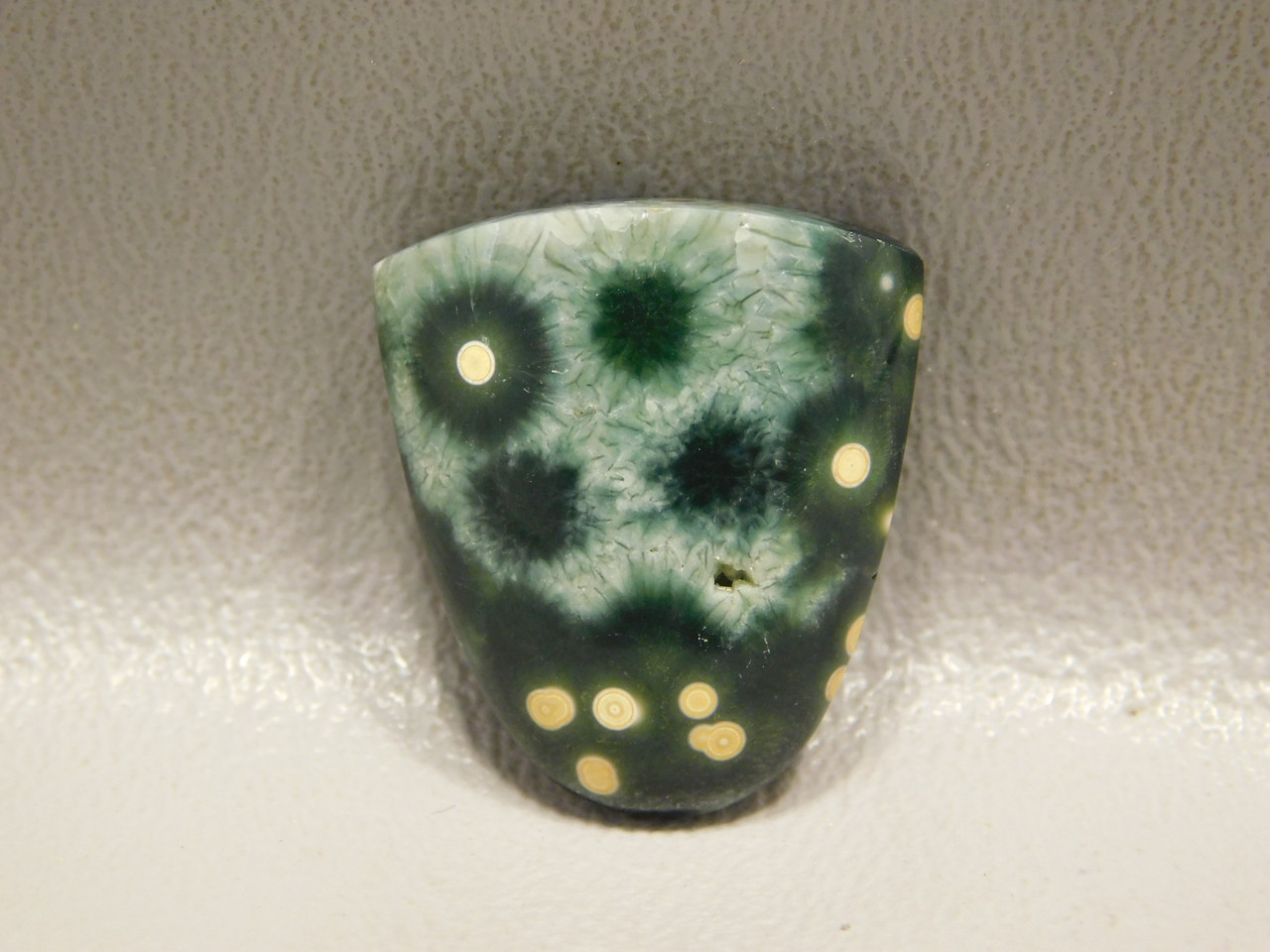 Shield Shape Green  Yellow Orbicular Ocean Jasper Stone Cabochon #3