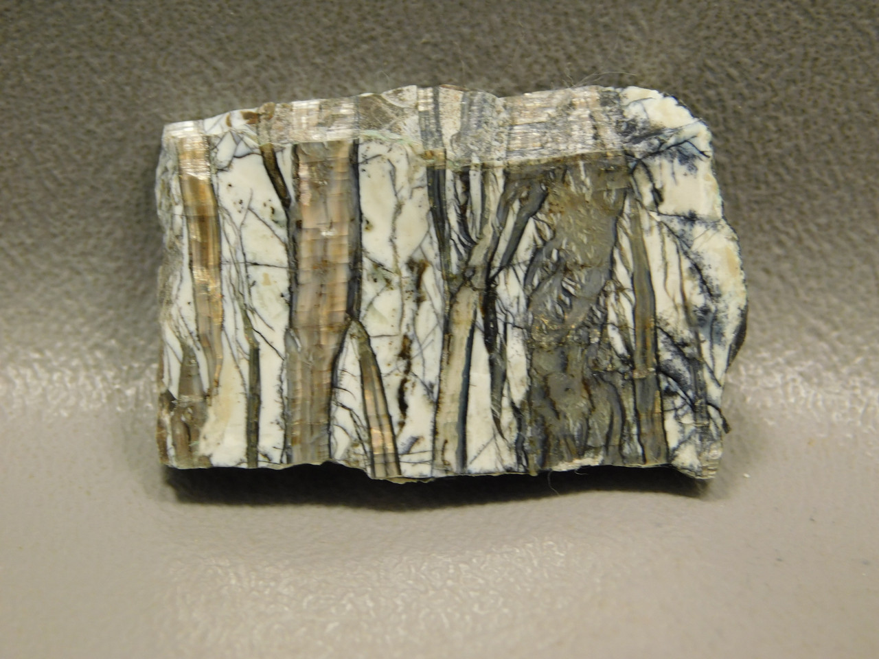 Arizona Pietersite Natural Freeform Slab Cabochon #S1