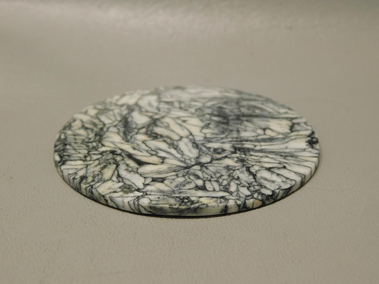 Pinolith Pinolite 2.5 inch Gemstone Large Round 63 mm Cabochon #xl4