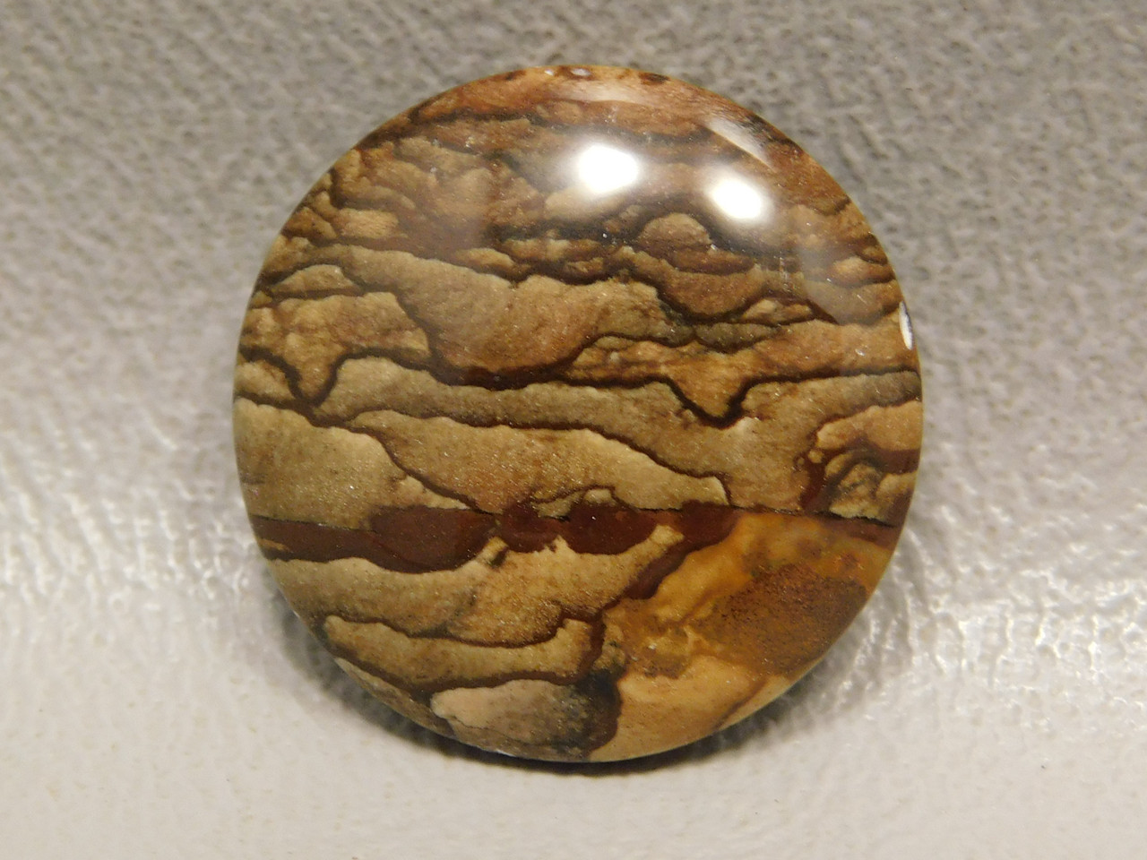 Deschutes Scenic Jasper Round 20 mm Cabochon Stone for Jewelry #21
