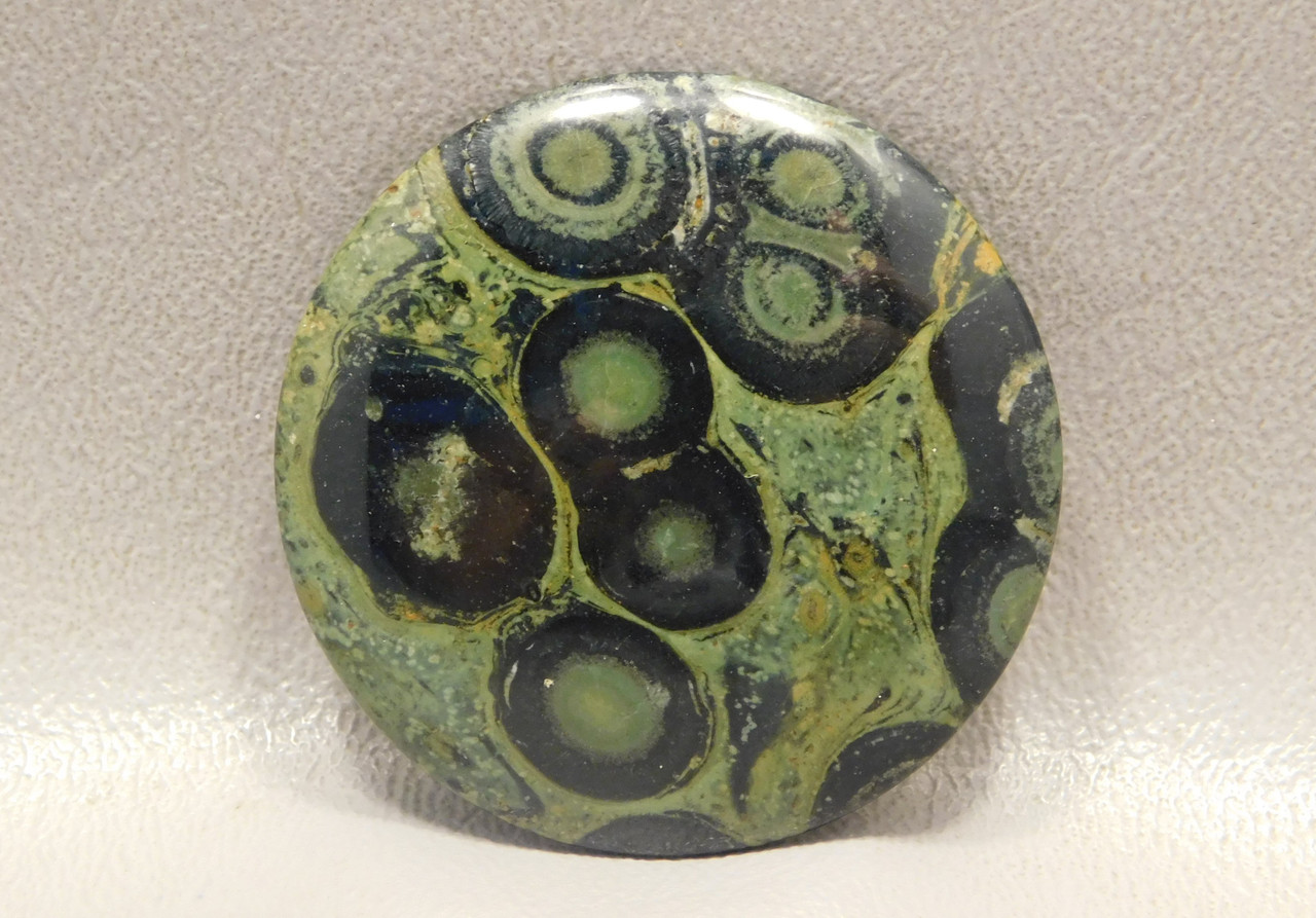 Cabochon Kabamba Jasper Fossil 40 mm Round Stone Gemstone #3