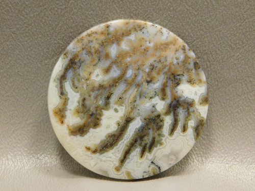 Graveyard Point Plume Agate 42 mm Round Cabochon Stone #10